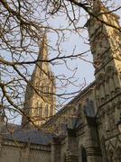 11th Dec 2013 - Salisbury Cathedral