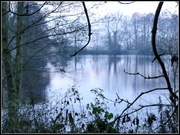 15th Dec 2013 - Ercall Pool