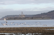 16th Dec 2013 - Homecoming for the USS Nimitz