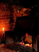 18th Dec 2013 - Gathering winter fuel....