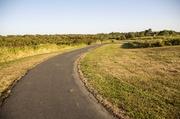 22nd Oct 2013 - pathway