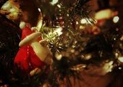 21st Dec 2013 - Santa...
