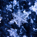 Holiday snowflake by aecasey