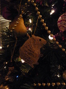 16th Dec 2013 - A mouse in the tree