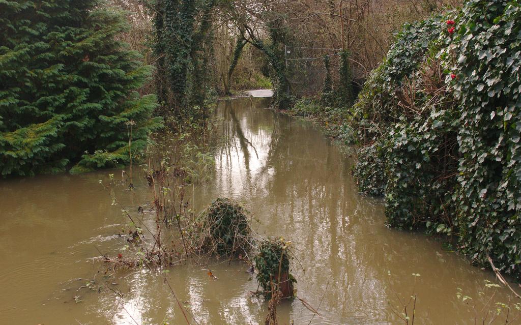 Flood by darkhorse