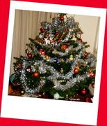24th Dec 2013 - A Christmas card....