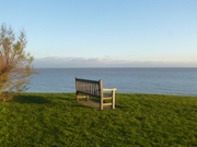 26th Dec 2013 - A seat with a view