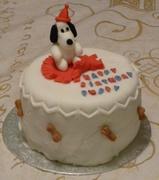 24th Dec 2013 - Puppy's Birthday