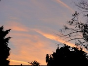 28th Dec 2013 - The morning sky
