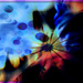 Playing with Processing When All Inspiration Fails by olivetreeann