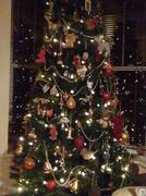 29th Dec 2013 - Oh Christmas Tree