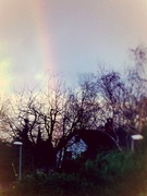 31st Dec 2013 - A pot of gold