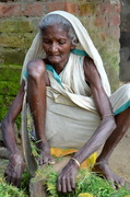 28th Oct 2013 - Old Lady