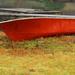 Orange Row Boat by nanderson