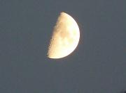 15th Sep 2010 - Half Moon