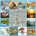 Favourites of 2013 by carolmw
