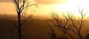 5th Jan 2014 - Mt. Cannibal sunset...