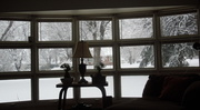 5th Jan 2014 - Watching the snow storm from the living room