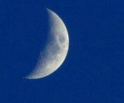 6th Jan 2014 - Blue Moon