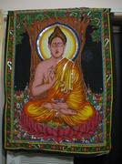9th Jan 2014 - Buddah Finding Himself