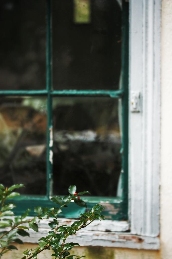 Tea House Window by mzzhope