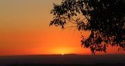 13th Jan 2014 - Mt. Cannibal Sunset...