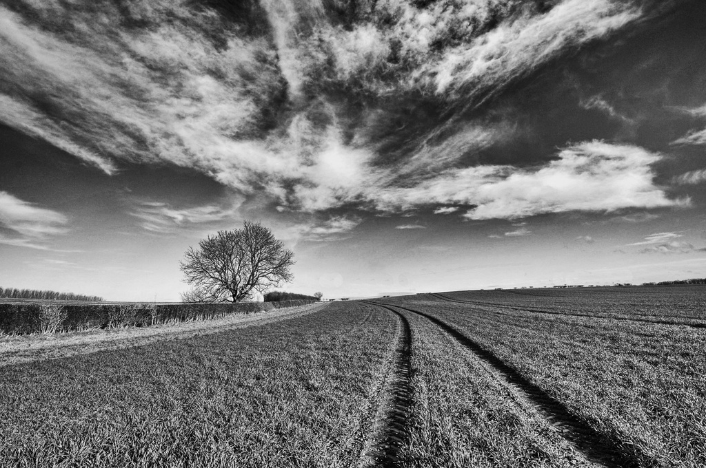Mere Hill landscape ~1 by seanoneill