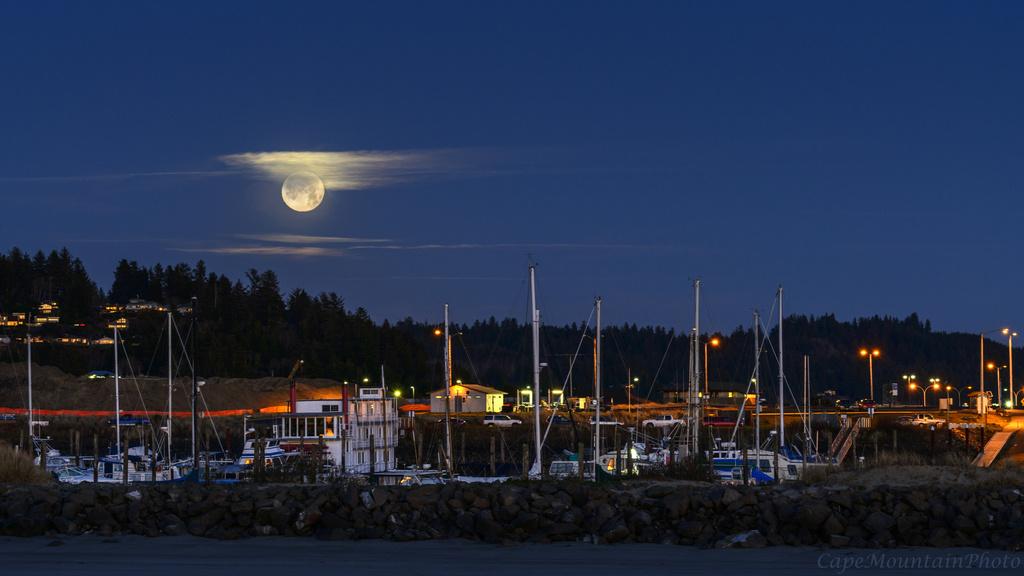 Newport Marina Moon  by jgpittenger