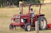19th Jan 2014 - Cutting the hay....