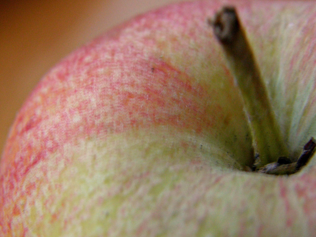 An apple a day - - -- by beryl
