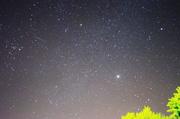 23rd Jan 2014 - Star Struck