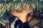 24th Jan 2014 - Cold
