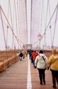 24th Jan 2014 - Walk the line