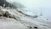 25th Jan 2014 - Snow storm