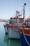 25th Jan 2014 - Fishing Boats