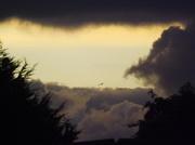 31st Jan 2014 - Weird sky today