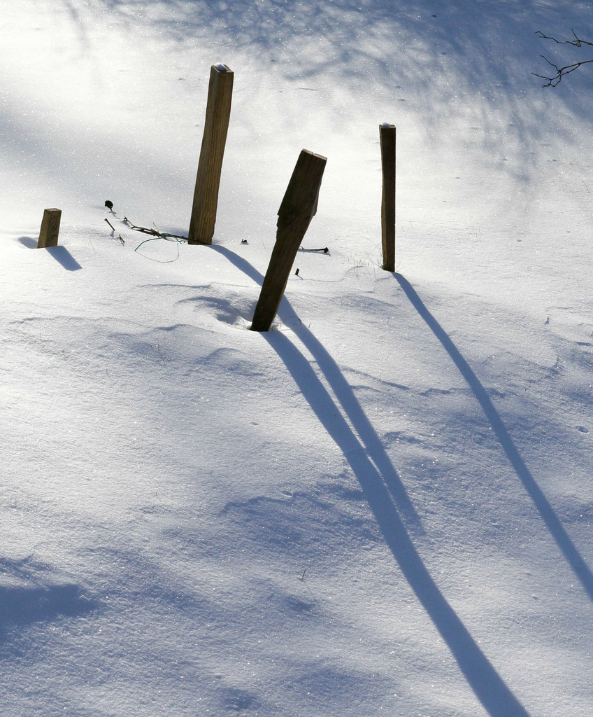 Shadows in the snow by mittens