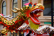 2nd Feb 2014 - Dragons Welcome the Lunar New Year