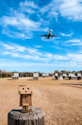 3rd Feb 2014 - 47/365: Danbo goes to airport