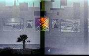 30th Jan 2014 - Palette