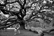 23rd Sep 2010 - Angel Oak
