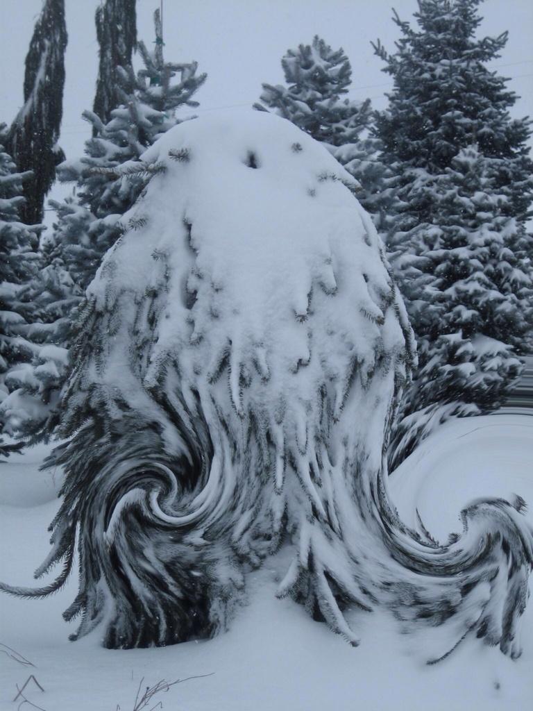 Snow monster by teiko