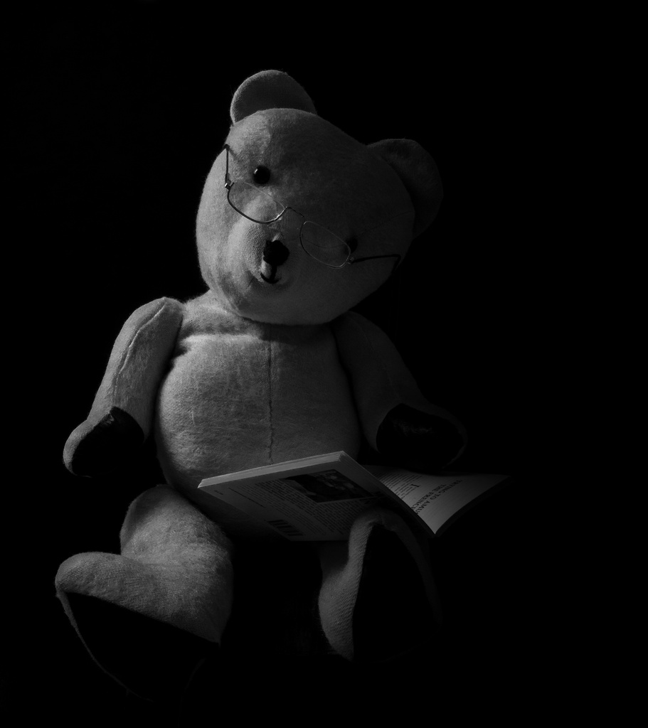 Ted Bear - the twilight years... by vignouse