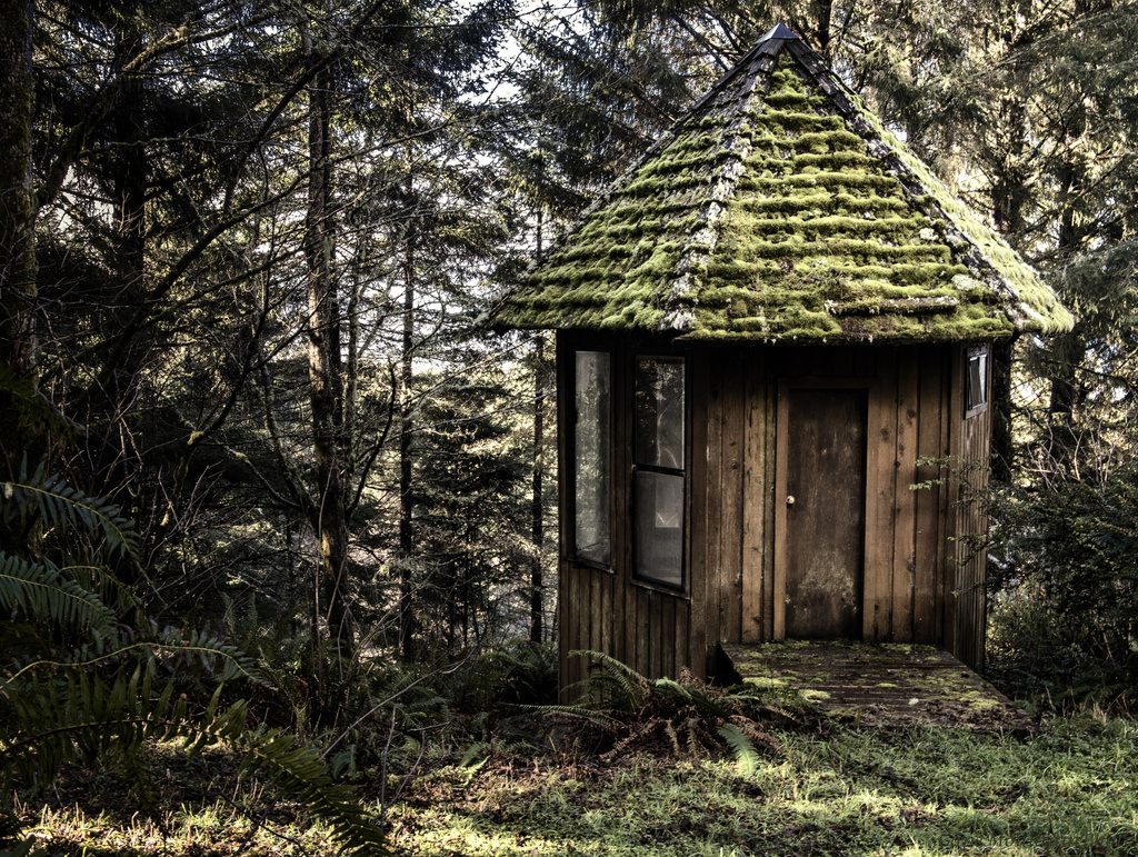 House In the Woods  by jgpittenger