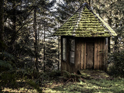 10th Feb 2014 - House In the Woods