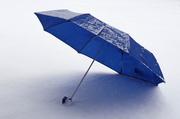 10th Feb 2014 - Umbrella
