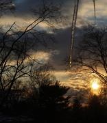 11th Feb 2014 - I see the sun