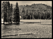 13th Feb 2014 - Sitting On a Log at Diamond Lake