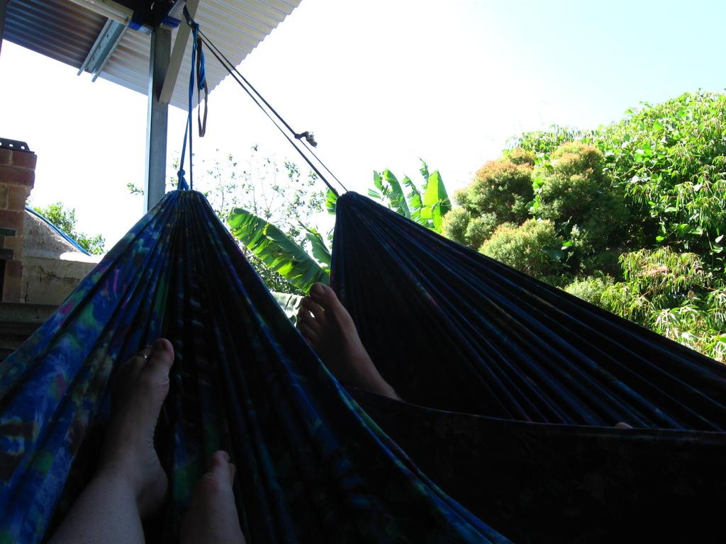 Hangin' out in hammocks! by mozette