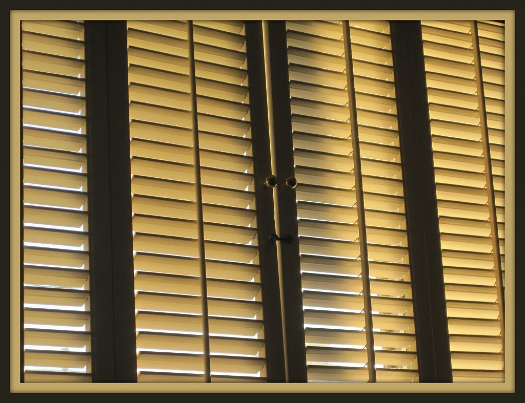 Plantation Shutters by allie912